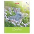 Дневник 5-11 класс 48л., твердый, BRAUBERG, глянцевая ламинация, с подсказом, Милый кролик, 105575