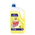Средство для мытья пола и стен 5л MR. PROPER (Мистер Пропер), ш/к 07327