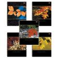 Тетрадь 96 л. А4 «Хатбер», гребень, клетка, выборочный лак, «Nature» («Листья»)
