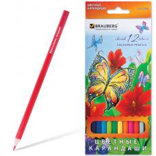 "Карандаши цветные BRAUBERG ""Wonderful butterfly"", 12 цветов, заточенные, картонная упаковка с блестками, 180535"