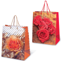 Пакет подарочный ламинированный, 26-32-15 см, «Цветы»