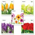 Тетрадь 96 л. BRAUBERG «Pro» (БРАУБЕРГ «Про»), офсет 60 г/м, клетка, обложка мелованный картон, «Blossom» («Цветы»), 5 видов