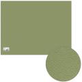 Бумага для пастели CANSON Mi-Teintes(Митант), А2+(500*650мм), 160г/м, 2-сторон, св.-зеленый(480)