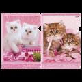 """Папка-уголок с рисунком """"Хатбер"""" HD, А4, Нежные котята, ассорти, 0,18мм"""