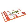 Бумага CREATIVE color (Креатив) А4, 80г/м, 100 л. интенсив оранжевая, БИpr-100ор, ш/к 45247