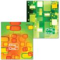 Тетрадь 96 л. BRAUBERG (БРАУБЕРГ) офсет, 60 г/м, клетка, обложка мелованный картон, «Для единственной», 2 вида