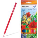 """Карандаши цветные BRAUBERG """"Wonderful butterfly"""", 12 цв., заточен., карт. упак. с блестками, 180535"""