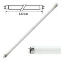 Лампа люминесцентная PHILIPS TL-D 36W/54-765, 36 Вт, цоколь G13, в виде трубки 120 см, холодный дневной свет