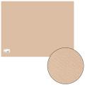 Бумага для пастели CANSON Mi-Teintes(Митант),А2+(500*650мм) 160г/м, 2-сторон, золот.-розовый(350)